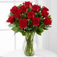 red roses for v day